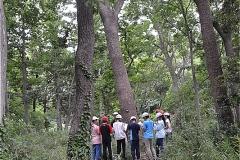堀之内貝塚:小学生の自然観察教室