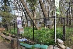 084-清瀬中里緑地保全地域