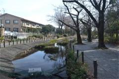 101-新田川緑道