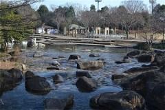 101-水遊びの池