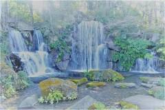 101-モミジの滝