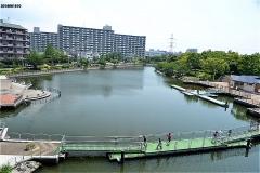 新左近川親水公園カヌー場