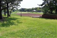 芝生広場:土のところはスイセンが植えられるらしい