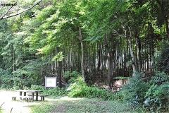 竹林公園・湧水点前の広場