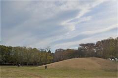 武蔵野公園:くじら山