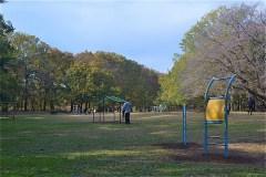 野川公園:アスレチックコース
