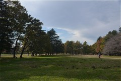 野川公園:自由広場