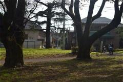 野川公園:東門