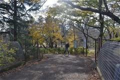野川公園:東八道路をまたいで、南側区画へ