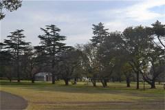 野川公園:東八道路をまたぎ、南側区画
