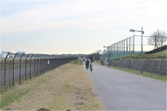 武蔵野の森公園:滑走路沿い