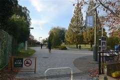 武蔵野の森公園:芝生広場から天文台通りに出る