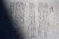507-清水山の森(カタクリ群生地)