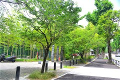 511-みなみもと町公園