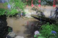511-策の池