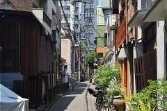 511-柳新道通り